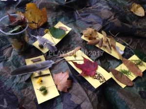 Autumn collecting activities in the park
